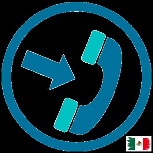 DID Fijo México